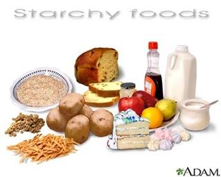 Pencernaan Karbohidrat, Protein & Lemak